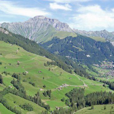 Pilz-Studienwoche in Adelboden 2019